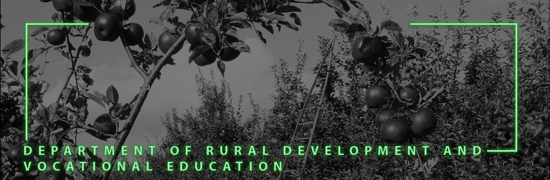 Department of Rural Development and Vocational Education (DRDVE)